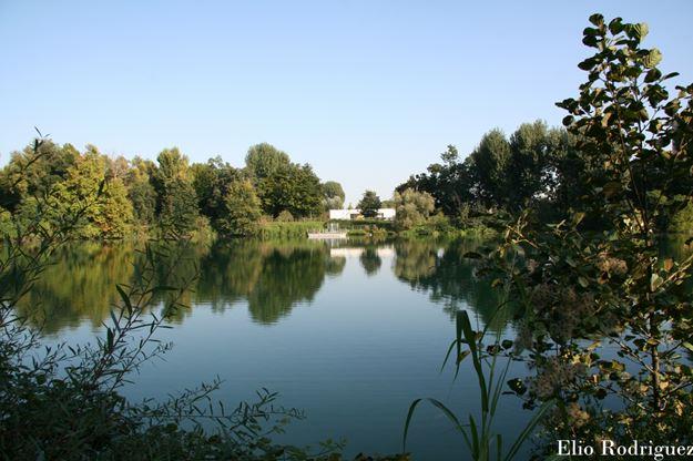Il laghetto di via europa a san donato milanese for Arredamenti ballabio san donato milanese